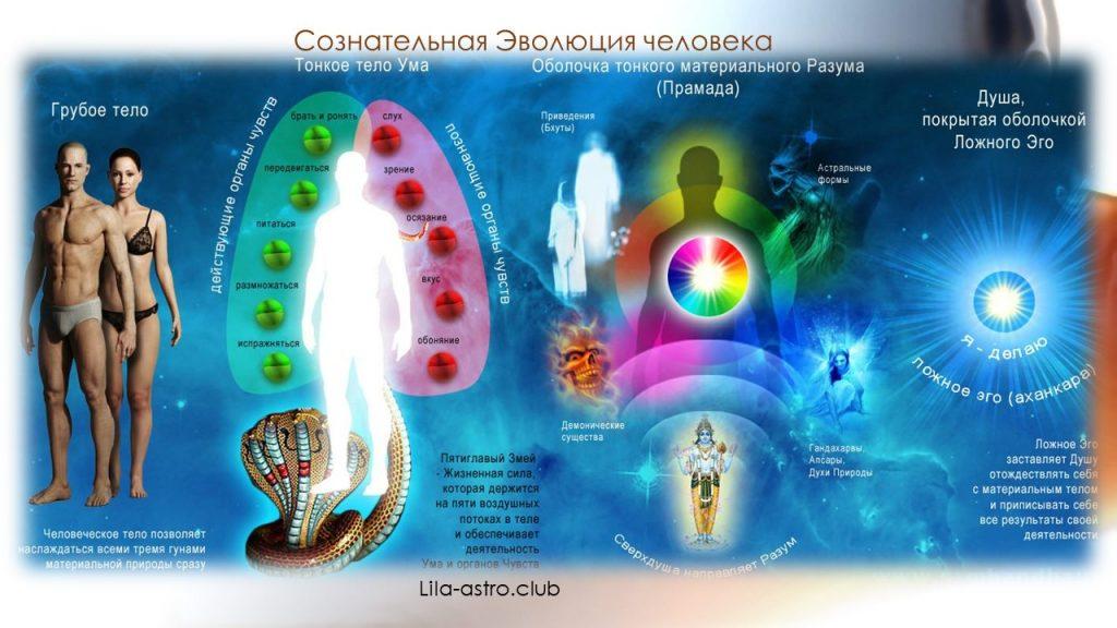 Инструментарий сознательной эволюции